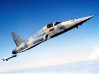 An F-5E Tiger II in flight Fine Art Print
