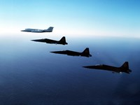 Three F-5E Tiger IIs fly in formation with a Learjet 25 Fine Art Print