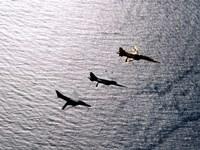 An F-5F Tiger II, F-5E Tiger II and A-4 Skyhawk Fine Art Print