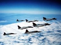 Four F-14 Tomcats and three F-5 Tiger IIs in flight Fine Art Print