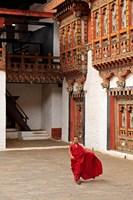Monk at Punakha Dzong, Punakha, Bhutan Fine Art Print
