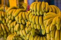 MOROCCO, Atlantic Coast, TAMRI, Market bananas Fine Art Print