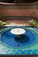 Jardin Majorelle, Marrakech, Morocco, North Africa Fine Art Print