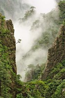 Mist on peaks and valleys, Grand Canyon, Mt. Huang Shan Fine Art Print