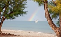Madagascar, Mahajunga. Fishing dhow and rainbow Fine Art Print