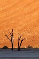 Namibia, Namib-Naukluft, Sossusvlei Desert, Dead Vlei Fine Art Print