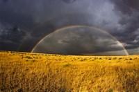 Rainbow in mist, Maasai Mara Kenya Fine Art Print