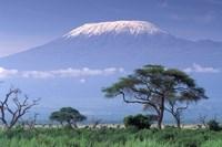 Mount Kilimanjaro, Amboseli National Park, Kenya Framed Print
