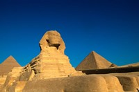 The Sphinx, Pyramids at Giza, Egypt Fine Art Print