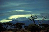 Summit of Mount Kilimanjaro, Amboseli National Park, Kenya Fine Art Print
