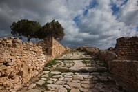 Tunisia, Carthage, Roman Villas, Ancient Architecture Fine Art Print
