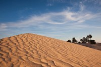 Great Dune, Tunisia Fine Art Print
