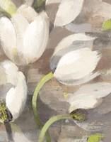 Tulip Delight II Fine Art Print