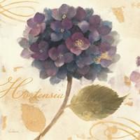 Abundant Hydrangea II Fine Art Print