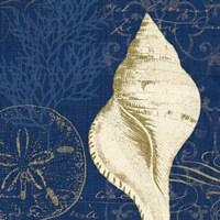 Coastal Moonlight IV Teal Fine Art Print