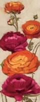 Free Range Roses I Fine Art Print