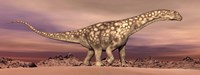 Large Argentinosaurus dinosaur walking in the desert Fine Art Print