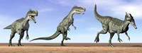 Three Monolophosaurus dinosaurs standing in the desert Fine Art Print
