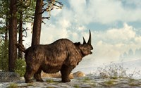 A woolly rhinoceros trudges through the snow, Pleistocene epoch Fine Art Print