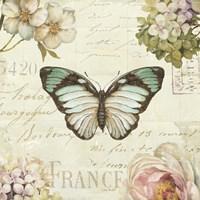 Marche de Fleurs Butterfly II Fine Art Print