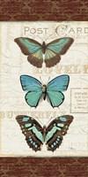 Papillons I Framed Print
