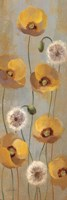 Spring Poppies II Framed Print