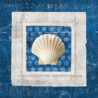 Sea Shell III on Blue Fine Art Print