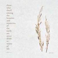Those Who Dwell Fine Art Print