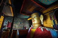 Golden Buddha, Shey, Ladakh, India Fine Art Print