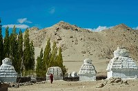 White Stupa Forest, Shey, Ladakh, India Fine Art Print