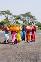 Women Carrying Loads on Road to Jodhpur, Rajasthan, India Fine Art Print
