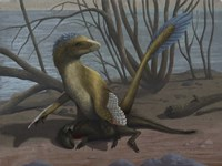 A Deinonychus protects its kill, a psittacosaurid dinosaur Fine Art Print