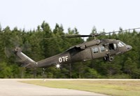 US Army UH-60L Blackhawk helicopter landing at Florida Airport Fine Art Print
