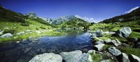 Ribno Banderishko River in Pirin National Park, Bulgaria Fine Art Print