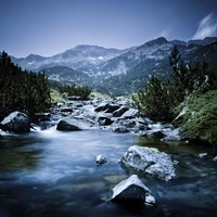 Small river flowing through the mountains of Pirin National Park, Bulgaria Fine Art Print