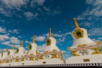 India, Jammu and Kashmir, Ladakh, Leh, chortens at Thiksey Monastery Fine Art Print