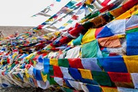 India, Jammu and Kashmir, Ladakh, Namshangla Pass prayer flags Fine Art Print