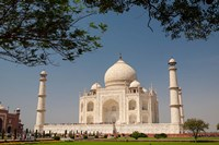 Asia, India, Taj Mahal with trees above as framing element Fine Art Print