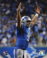 Matthew Stafford 2014 Action Fine Art Print