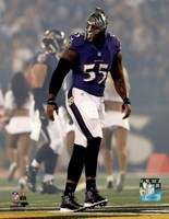 Terrell Suggs 2014 Action Fine Art Print