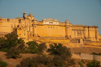 Amber Fort, Jaipur, Rajasthan, India Fine Art Print
