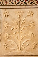 Carving detail, Taj Mahal, Agra, Uttar Pradesh, India. Fine Art Print