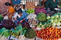 Selling fruit in local market, Goa, India Fine Art Print