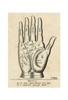 Palmistry: Palm Diagram Fine Art Print