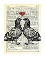 Pigeons in Love Framed Print