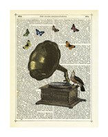 Gramophone, Bird & Butterflies Fine Art Print