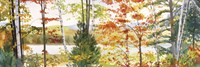 Autumn Lake III Fine Art Print