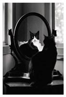 Reflection Fine Art Print