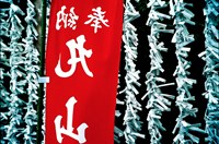 Fortune Papers at Shinto Shrine, Tokyo, Japan Fine Art Print