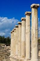 Israel, Bet She'an National Park, Columns Fine Art Print